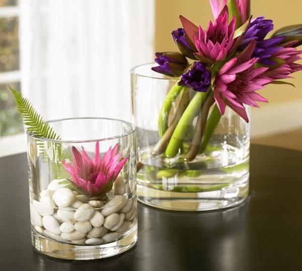Ý tưởng trang trí phòng làm việc bằng hoa tươi Kết hợp vỏ sò/đá cuội