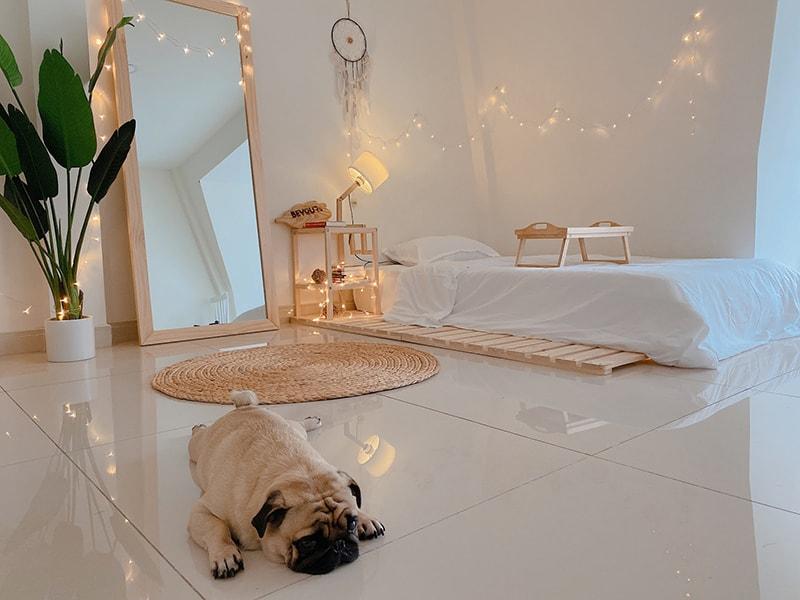 Giường ngủ skinny 1m4 phù hợp cho căn phòng nhỏ, chỉ có 1 người ngủ